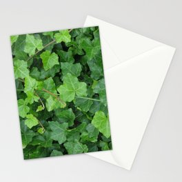 Creeping Ground Cover Stationery Cards