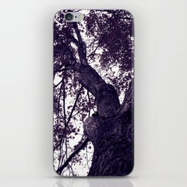 Ultra Violet Winter Trees iPhone Skin