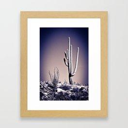 Cactus 20 Framed Art Print