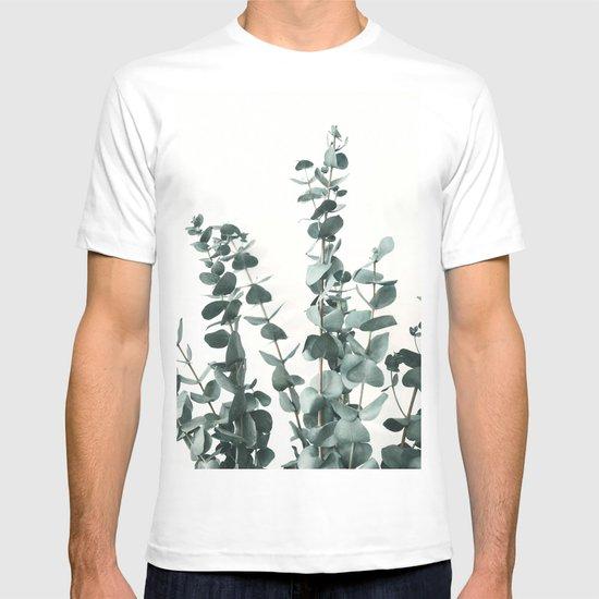 Eucalyptus Leaves by judithhoy