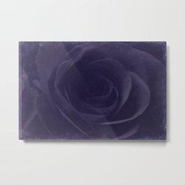 Aubergine -- Tone on Tone Purples -- Floral Rose Metal Print