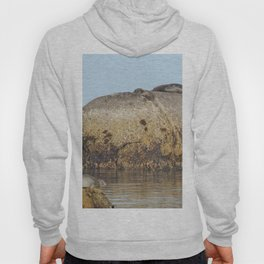 Seals and Boulders Hoody