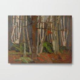 Tom Thomson Birch Woods in Autumn c. 1916 Canadian Landscape Artist Metal Print