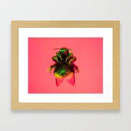 Bugged #30 Framed Art Print