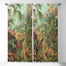 Vintage Plants Decorative Nature Blackout Curtain