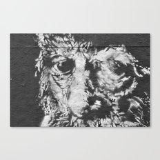 eyes of wisdom Canvas Print