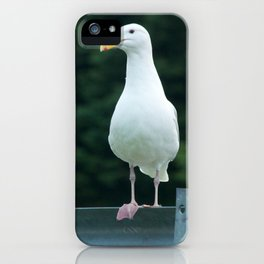 Seagull Photography Print iPhone Case