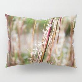 Wild Red Grass Pillow Sham