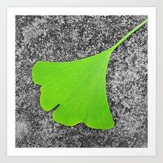 ginkgo leaf I Art Print
