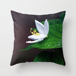 drop that flower Throw Pillow