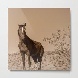 Wild_Horses Sepia 3501 - Nevada Metal Print