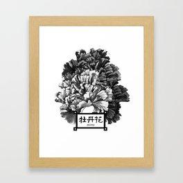 peony Framed Art Print