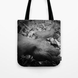 MY LITTLE PIG (Us And Them) Tote Bag