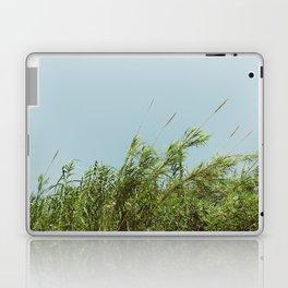 Green and Sky Laptop & iPad Skin