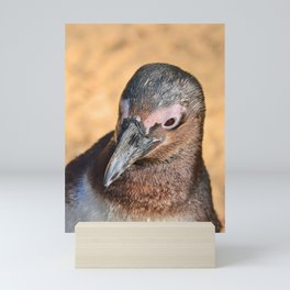 African Penguin Mini Art Print