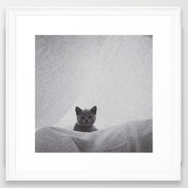 Kitten under the sheets Framed Art Print