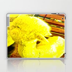Amarillo Animal Laptop & iPad Skin