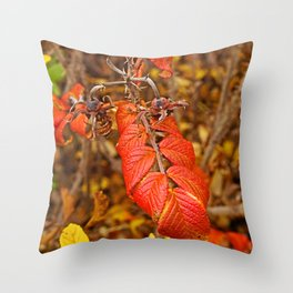 autumnal leaves Throw Pillow