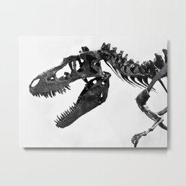 Tyrannosaurus Rex Skeleton Metal Print