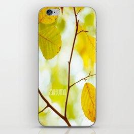 Autumn YesterYear iPhone Skin