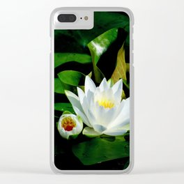 White Water Lily and Bud in Pond Clear iPhone Case