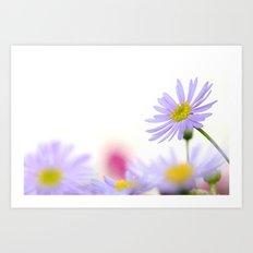 lone daisy I Art Print