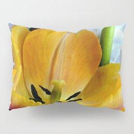 Open Wide Pillow Sham