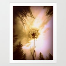my flower Art Print
