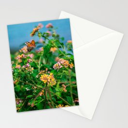 Hawaiian Flowers & Butterfly (2) | Hawaii Tropical Nature Coastal Travel Photography Print Stationery Cards