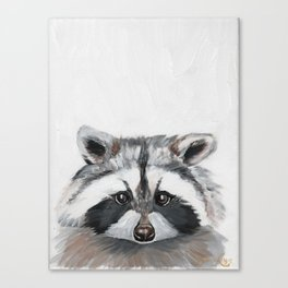 Rhubarb the Raccoon Canvas Print
