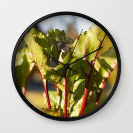 Beet Leaves Wall Clock