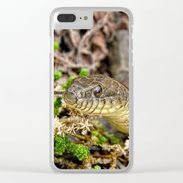 A Snake In The Moss Clear iPhone Case