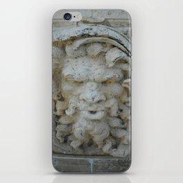 Wall in Vizcaya iPhone Skin