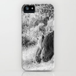 Pair of horses iPhone Case