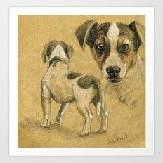 Jack Russel terrier SK080 Art Print