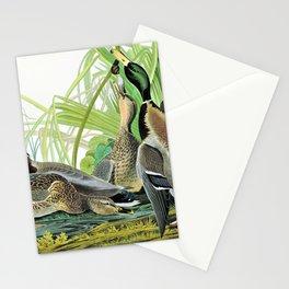 Mallard Ducks - John James Audubon Stationery Cards