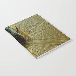 Aesthetic Movement Notebook