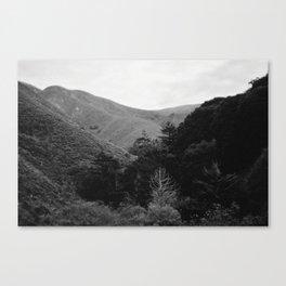 Big Sur, CA Canvas Print