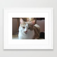 simba Framed Art Prints featuring Simba by Kim Hawley