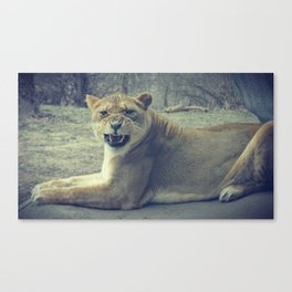 Stay Away [Full View] Canvas Print