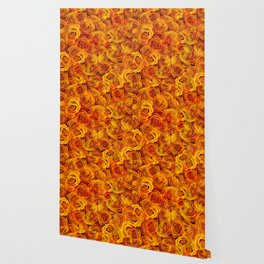 Grenadier Tangerine Roses Wallpaper