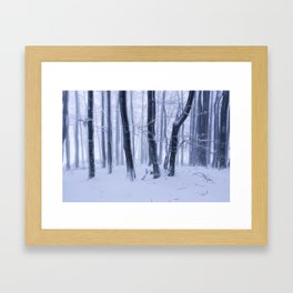 The Frozen Trees Framed Art Print