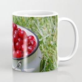 Prunus cerasus sour cherry fruits Coffee Mug