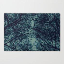 TREE 6.2 Canvas Print