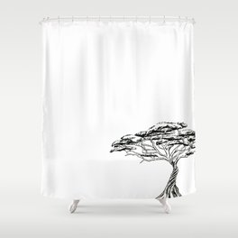 Whistling Thorn , Zen Bonsai African Tree Shower Curtain