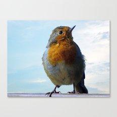 Fluffy Robin Redbreast Canvas Print