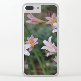 Beauty Surrounds Us Clear iPhone Case