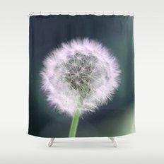 lone dandelion  Shower Curtain