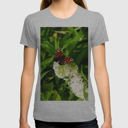 The Peacock Butterfly T-shirt