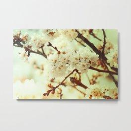 Sakura Gold Metal Print